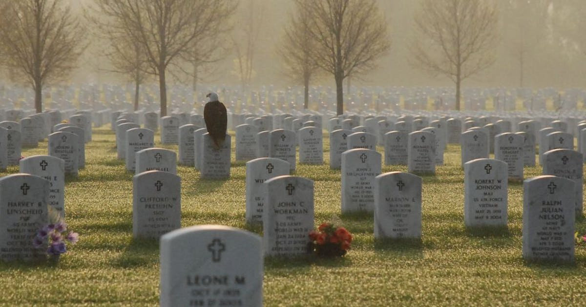 All Gave Some, Some Gave All-1tevlin0810.jpg