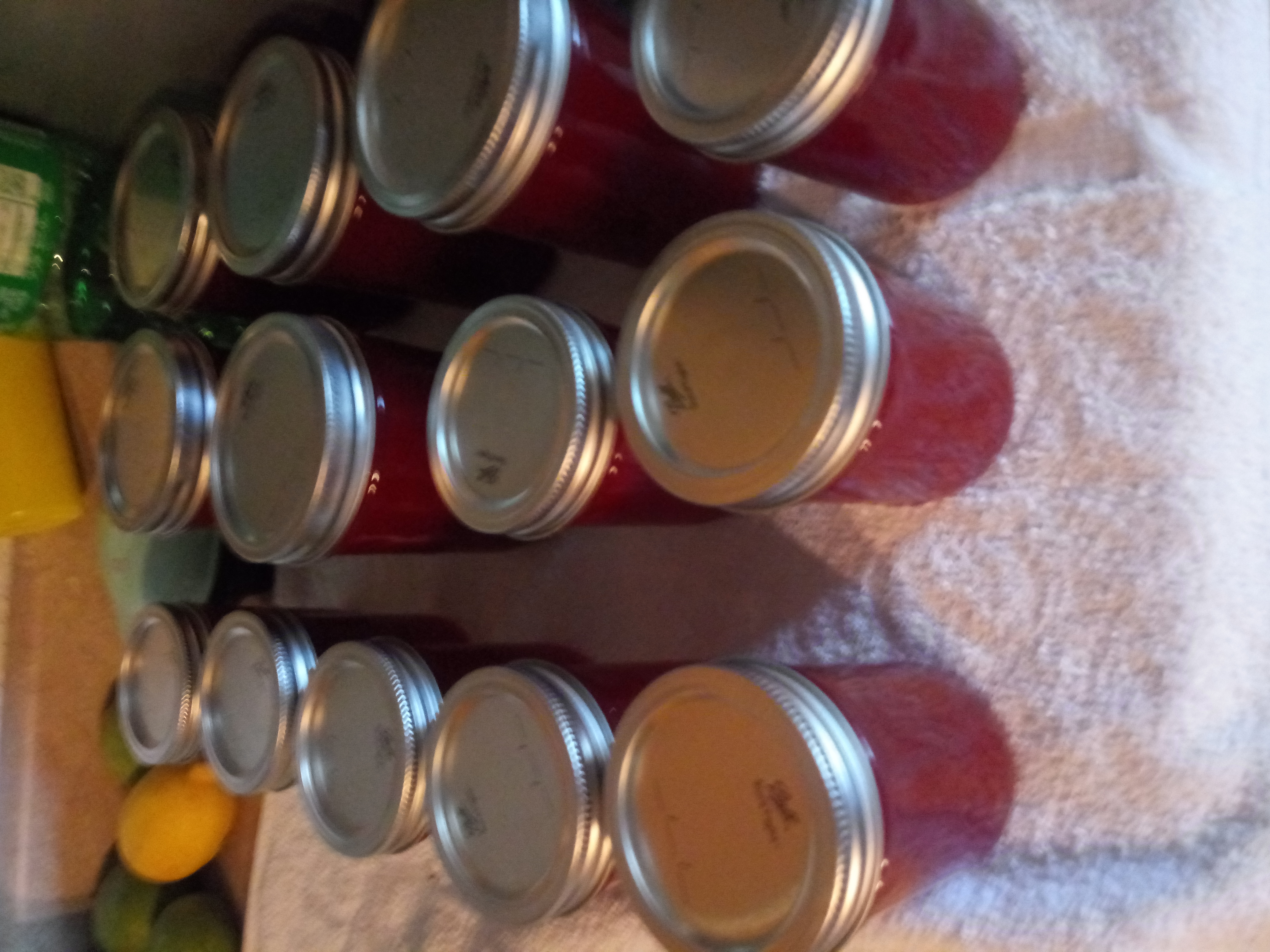 In love with a canning queen-20190825_175904.jpg