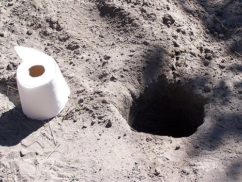Answer for urban preppers- thoughts?-african-toilet.jpg