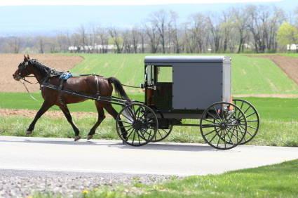 Name:  amish-wagon-opt.jpg Views: 87 Size:  44.3 KB