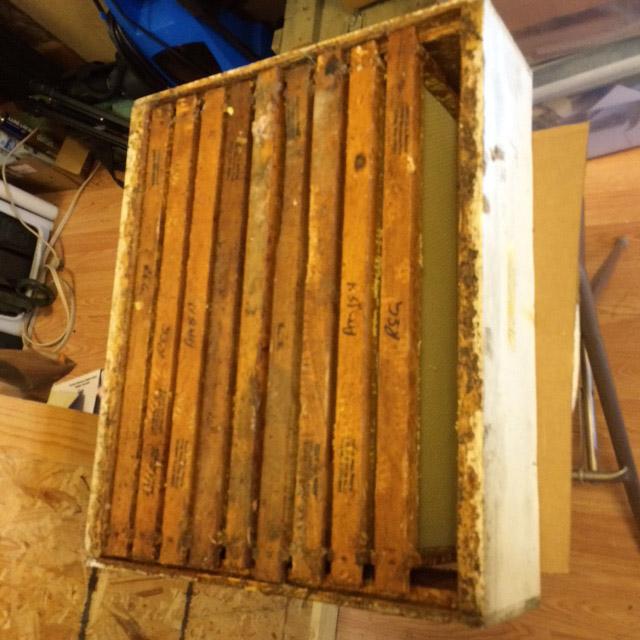 Today's Prep:  Fix Motel Up for my 30,000 ladies-beekeeping-2.jpg