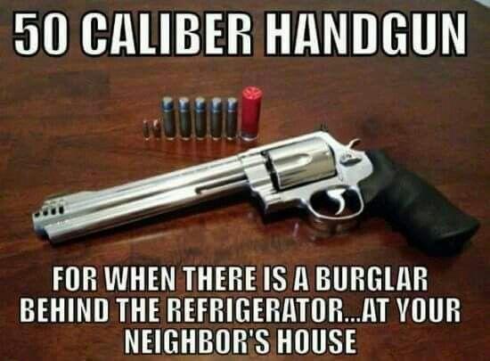 The Firearm & 2A Meme Thread-c57b3dba77914894cf29e8ab81121cb7.jpg