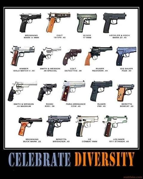 The Firearm & 2A Meme Thread-diversity.jpg