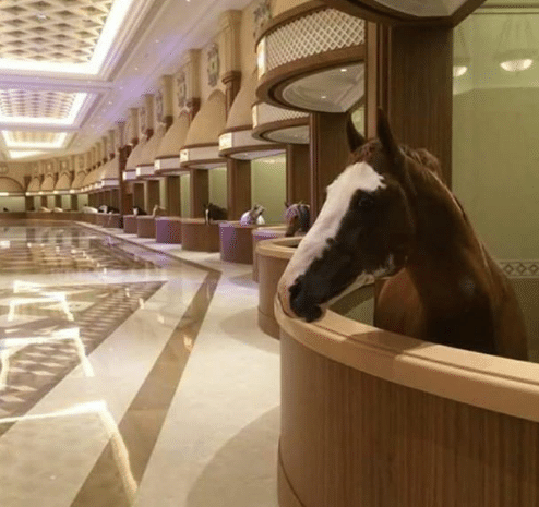 Name:  dubaimarblehorse-e1520775015196.png Views: 133 Size:  133.4 KB