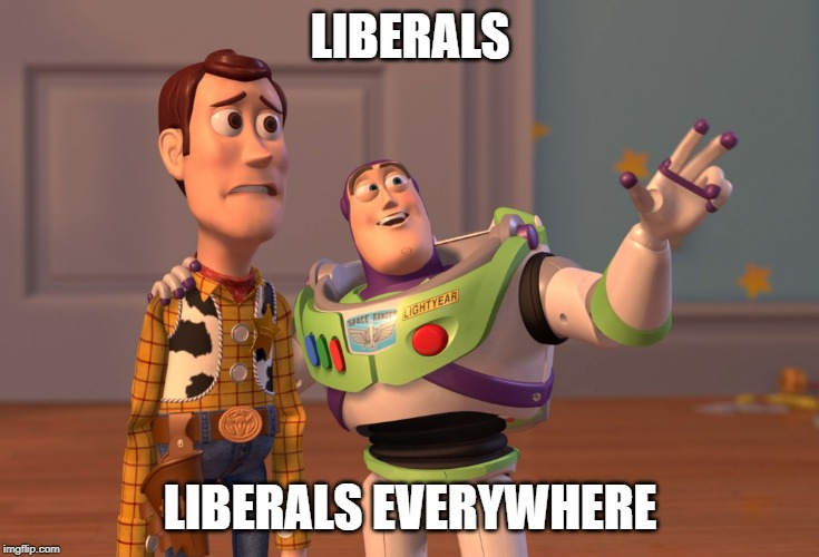 Attacks on Trump Supporters-liberals.jpg