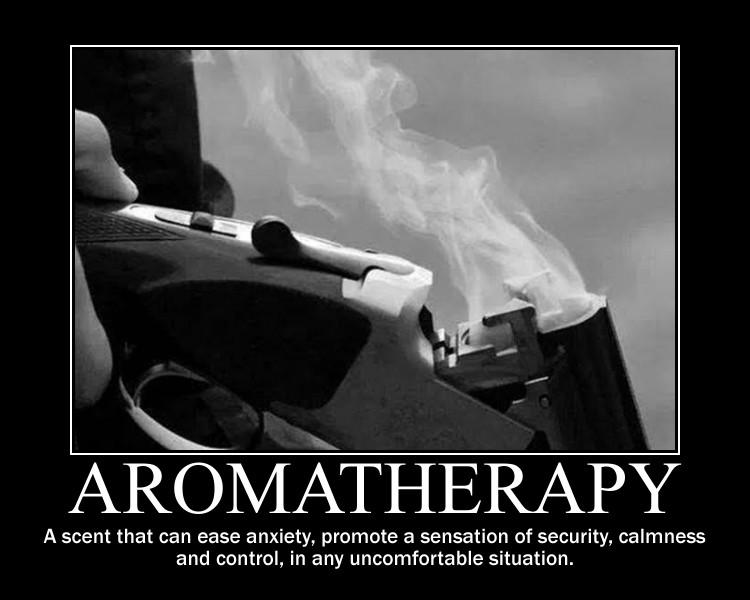 The Firearm & 2A Meme Thread-meme-17-.jpg