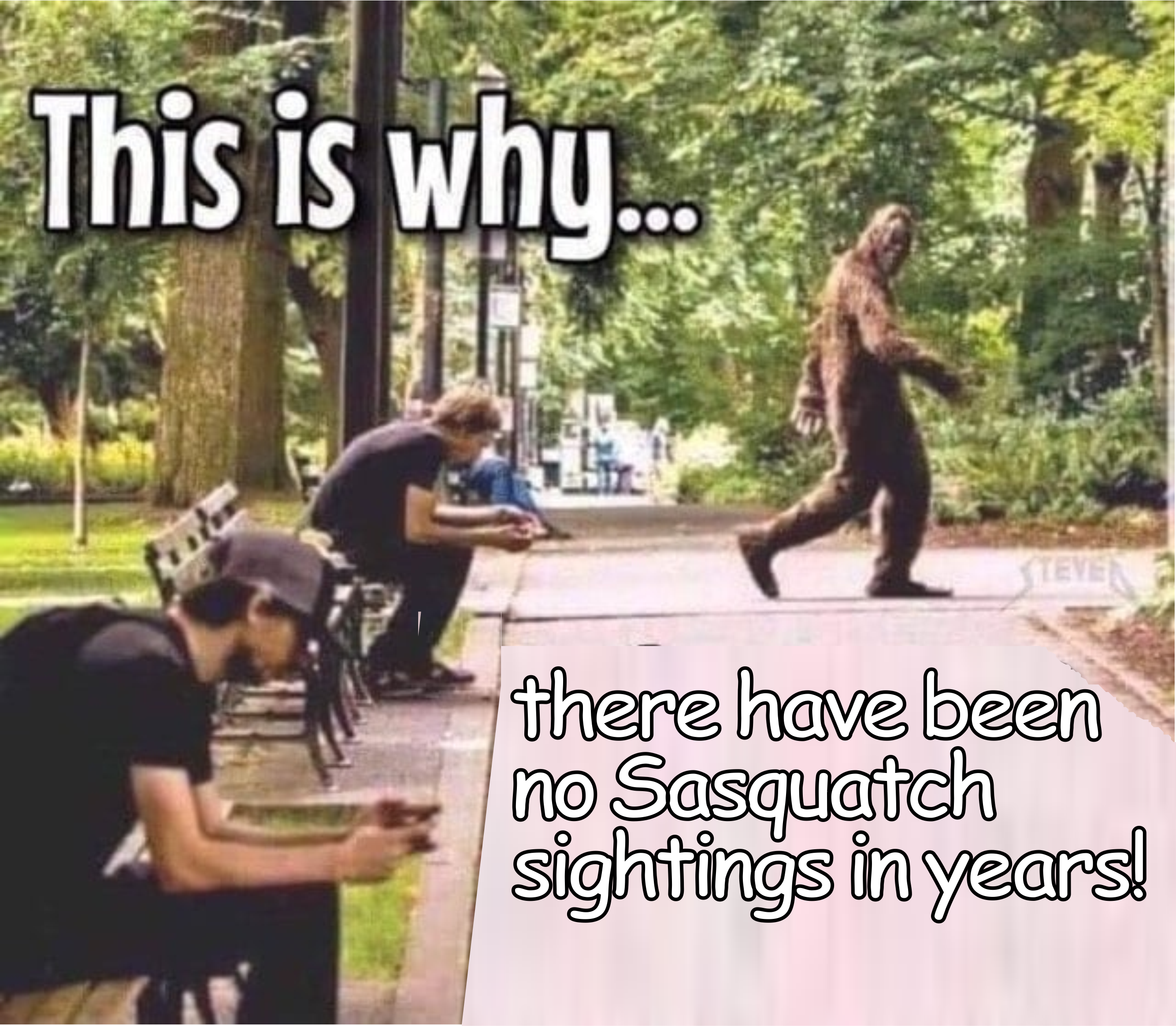 Need to laugh!-no-sasquatch.png