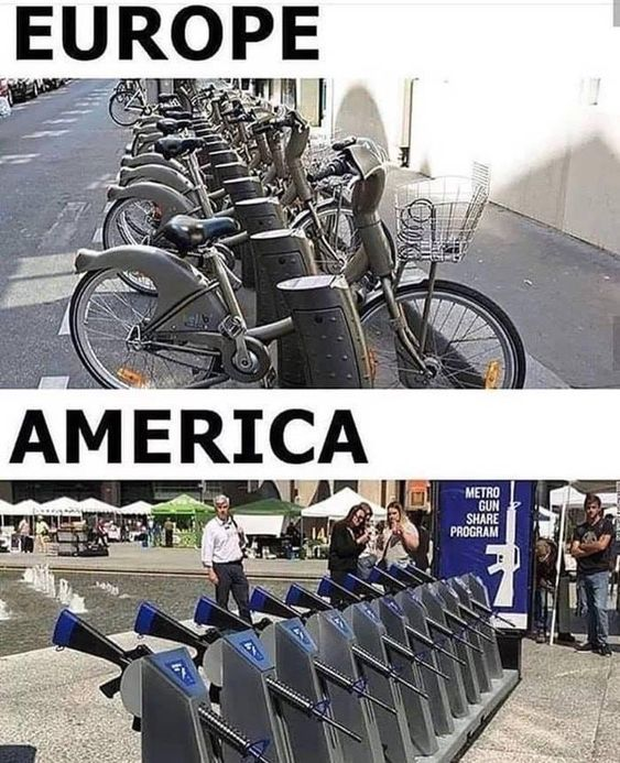 The Firearm & 2A Meme Thread-public-access.jpg