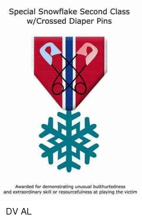 Lifetime Pass for Federal Land & Parks-special-snowflake-second-class-w-crossed-diaper-pins-awarded-demonstrating-11550341.png