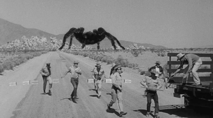 Anti Tick Pants-tarantula.png