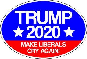 Name:  trump 2020 2.png Views: 46 Size:  96.4 KB