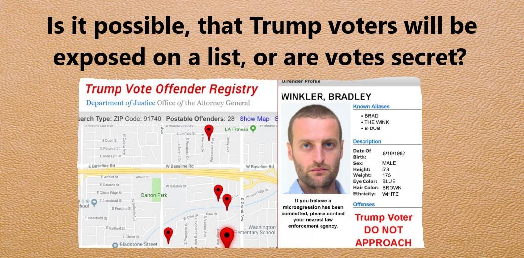 Are Trump Voters In Danger Of Being Exposed?-trump-voter.jpg
