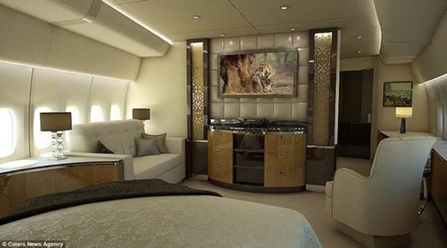 Pres. Zuma's 747-unnamed-5-.jpg