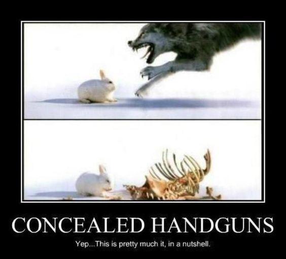 The Firearm & 2A Meme Thread-yeah-nutshell.jpg