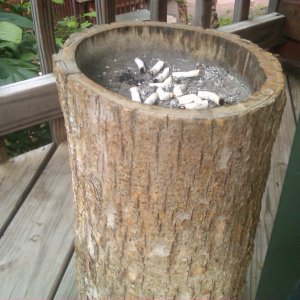Hollowed out log ashtray